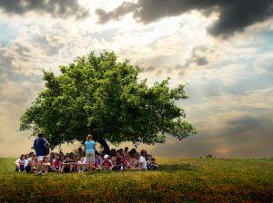 1161714_kids_under_tree